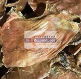 Struisvogelmaag 1250 gram