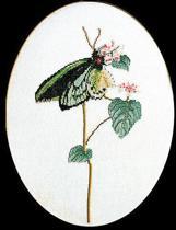 Thea Gouverneur Borduurpakket 1022A Vlinder groen - Aida stof 100% katoen