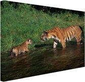 Moeder en welp in water Canvas 80x60 cm - Foto print op Canvas schilderij (Wanddecoratie)