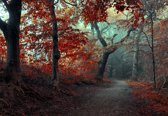 Fotobehang The Red Forest|V8 - 368cm x 254cm|Premium Non-Woven Vlies 130gsm