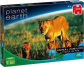 Planet Earth - Animal Families: Leeuw