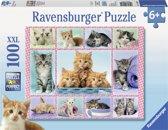 Ravensburger puzzel Schattige Katjes 100 XXL stukjes