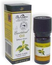 Ylang ylang essentiële olie 5 ml.