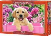 Labrador Puppy in pink box (500 stukjes)