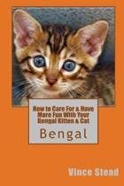 How to Care for & Have More Fun with Your Bengal Kitten & Cat