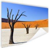 Boompjes in woestijn Poster 150x75 cm - Foto print op Poster (wanddecoratie woonkamer / slaapkamer)
