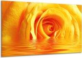 Glasschilderij Roos | Geel | 120x70cm 1Luik | Foto print op Glas |  F002919