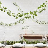 Decoratieve Klimop Backdrop Decoratie | 5 stuks a 2 meter | Kunst | Beautiful Botanics | Ginger Ray