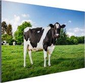 FotoCadeau.nl - Zwart witte Koe Aluminium 90x60 cm - Foto print op Aluminium (metaal wanddecoratie)