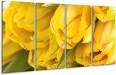 Glasschilderij Tulpen | Geel, Rood, Groen | 160x80cm 4Luik | Foto print op Glas |  F000410
