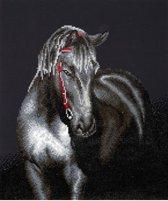Diamond Dotz Midnight Stallion (52x52 cm) - Diamond Painting
