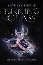 Download ebook Burning Glass the cheapest