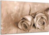 Canvas schilderij Roos | Sepia, Bruin | 120x70cm 1Luik