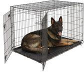 Petstore Hondenbench 2 Deurs - Maat XXL 121x74x81 cm - Zwart - inclusief passend vetbed