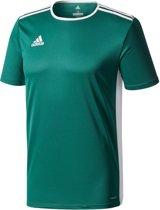 adidas Entrada 18 Trikot Heren Sportshirt - Collegiate Green/White - Maat M