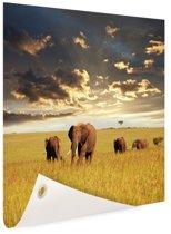 Kudde olifanten op graslandschap Tuinposter 200x100 cm - Foto op Tuinposter / Schilderijen voor buiten (tuin decoratie)