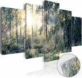 Afbeelding op acrylglas - Sprookjesbos, Groen,   5luik