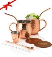 Moscow Mule Beker Set – Inclusief 2 Heerlijke Mule Recepten – Cocktailset - Luxe Cadeau Voor Hem Haar Man Vrouw - 500ml – Qwality