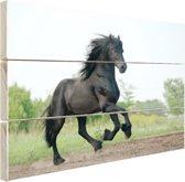 Prachtig zwart paard Hout 80x60 cm - Foto print op Hout (Wanddecoratie)