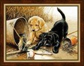 Vissende Puppy's