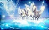 Fotobehang Vlies | Paarden | Blauw | 368x254cm (bxh)