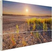 Droge woestijn met plantjes  Hout 160x120 cm - Foto print op Hout (Wanddecoratie) XXL / Groot formaat!