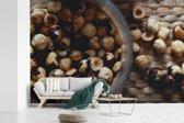 Fotobehang vinyl - Geroosterde en gepelde hazelnoten in een glazen container breedte 390 cm x hoogte 260 cm - Foto print op behang (in 7 formaten beschikbaar)
