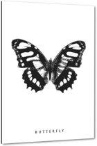 Butterfly - Vlinder - 40x60 cm - Anne Waltz - PixaPrint - WE-0023-1