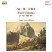 Schubert: Piano Son. D784&D894