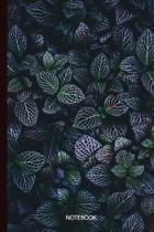 Notebook: Dark Leaves