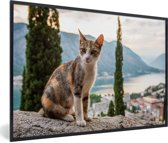 Foto in lijst - Kat op het muurtje met overzicht over de Baai van Kotor in Montenegro fotolijst zwart 60x40 cm - Poster in lijst (Wanddecoratie woonkamer / slaapkamer)