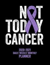 Not Today Hodgkin's Lymphoma: 2020 -2021 Daily/ Weekly/ Monthly Planner: 2-Year Personal Planner with Grid Calendar Purple Awareness Ribbon, Hodgkin