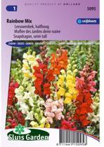 Sluis Garden Leeuwenbek Rainbow Mix, Halfhoog