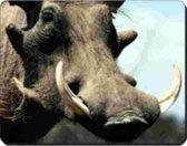 Wrattenzwijn Muismat