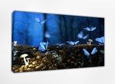 Vlinder 80x50, Canvas schilderij uitgerekt op het frame, 100% katoen, Wanddecoratie