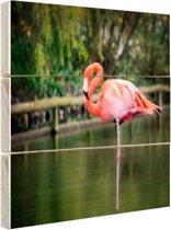 Een roze flamingo Hout 60x40 cm - Foto print op Hout (Wanddecoratie)
