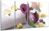 Glasschilderij Spa   Paars, Wit   160x80cm 4Luik   Foto print op Glas    F006137