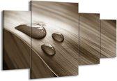 Schilderij | Canvas Schilderij Macro, Druppel | Sepia, Bruin | 160x90cm 4Luik | Foto print op Canvas