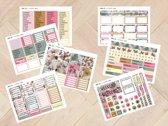 Planner stickers Combinatie 2005 & 2006 voor Mascha Planner
