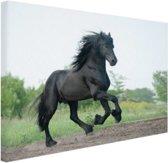 Prachtig zwart paard Canvas 60x40 cm - Foto print op Canvas schilderij (Wanddecoratie woonkamer / slaapkamer) / Dieren Canvas Schilderij