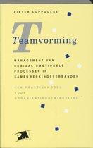 PM-reeks - Teamvorming