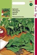 Hortitops Zaden - Spinazie Nieuwzeelandse