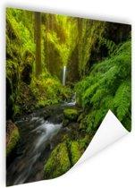 Prachtig plaatje jungle Poster 90x60 cm - Foto print op Poster (wanddecoratie woonkamer / slaapkamer)