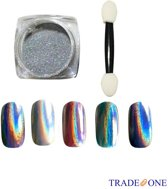 Silver Metallic nagels pigment poeder met glittertje - Nail Art - 1 potje incl applicator