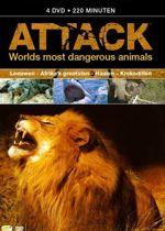 Attack - Worlds Most Dangerous Animals
