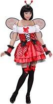 Lieveheersbeest Kostuum | Schattig Lieveheersbeestje | Vrouw | Large | Carnaval kostuum | Verkleedkleding