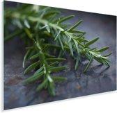 Rozemarijn op een tafel Plexiglas 60x40 cm - Foto print op Glas (Plexiglas wanddecoratie)