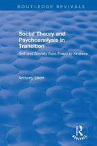 Social Theory and Psychoanalysis in Transition