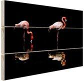 Twee flamingos met reflectie in water Hout 30x20 cm - klein - Foto print op Hout (Wanddecoratie)