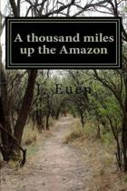 A Thousand Miles Up the Amazon